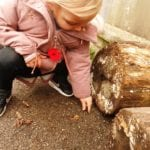 Felixstowe Nursery School outdoor Gallery 1
